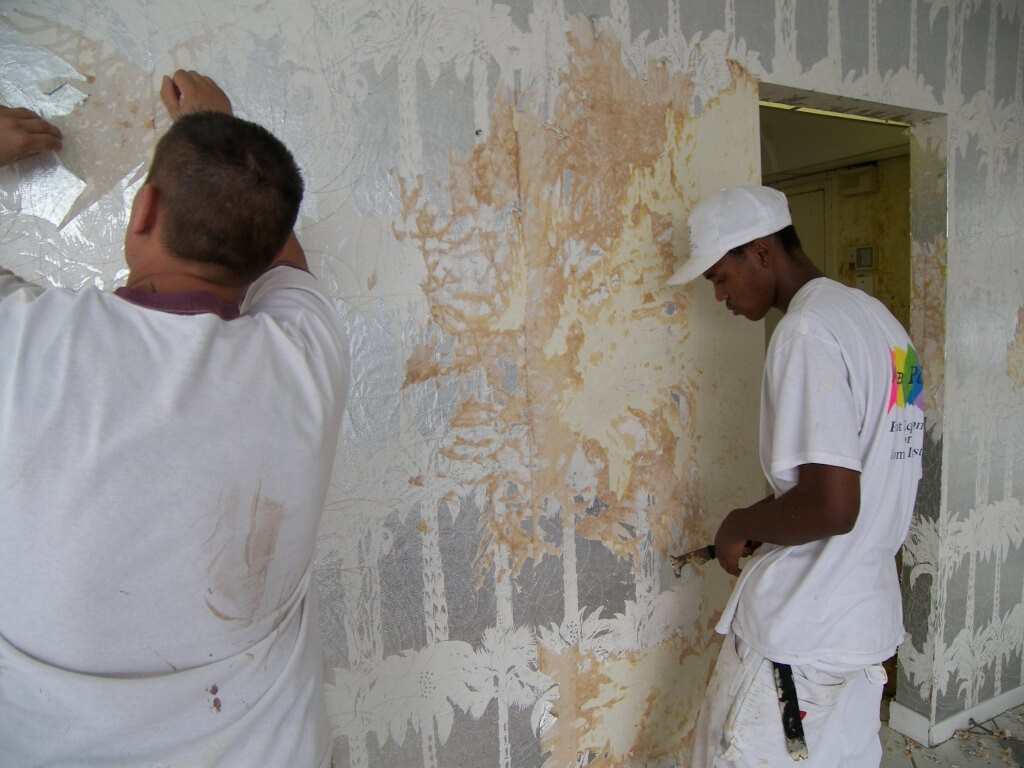 Wallpaper Removal and Installation-Grand Prairie TX Professional Painting Contractors-We offer Residential & Commercial Painting, Interior Painting, Exterior Painting, Primer Painting, Industrial Painting, Professional Painters, Institutional Painters, and more.